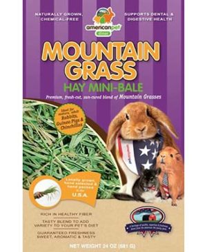 JEPetz - Mountain Grass Hay Mini-Bale