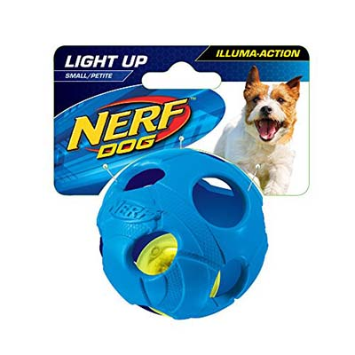 Light Up Dog Ball Pets At Home